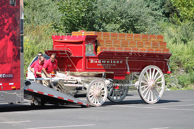 Budweiser Clydesdale Trucks arriving to setup