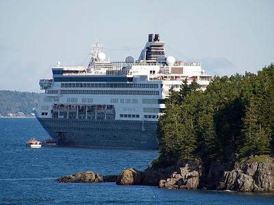 Norwegian anchored in Bar Harbor
