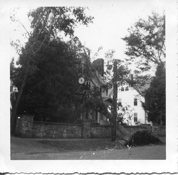 1954 Hurricane Carol in Quincy
