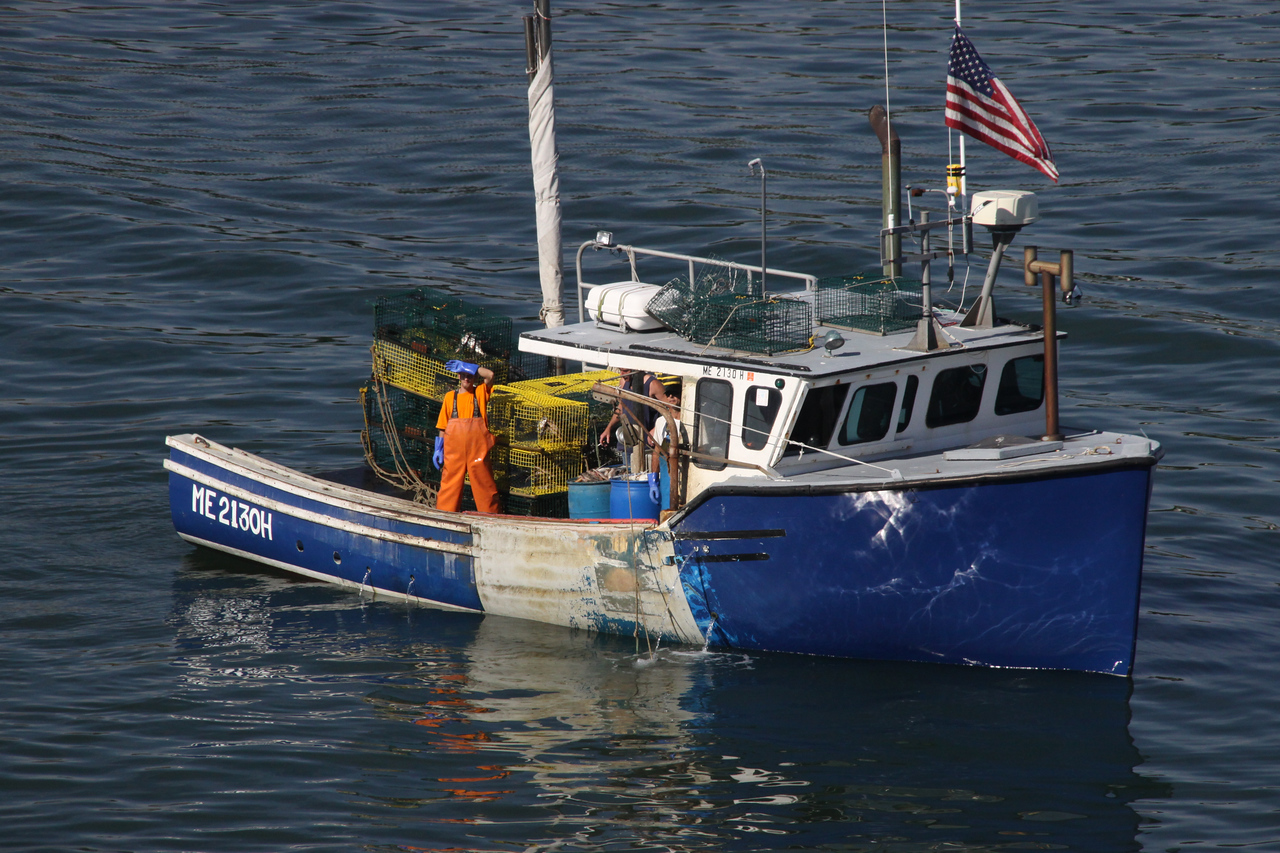 Maine Lobsterman in Portland