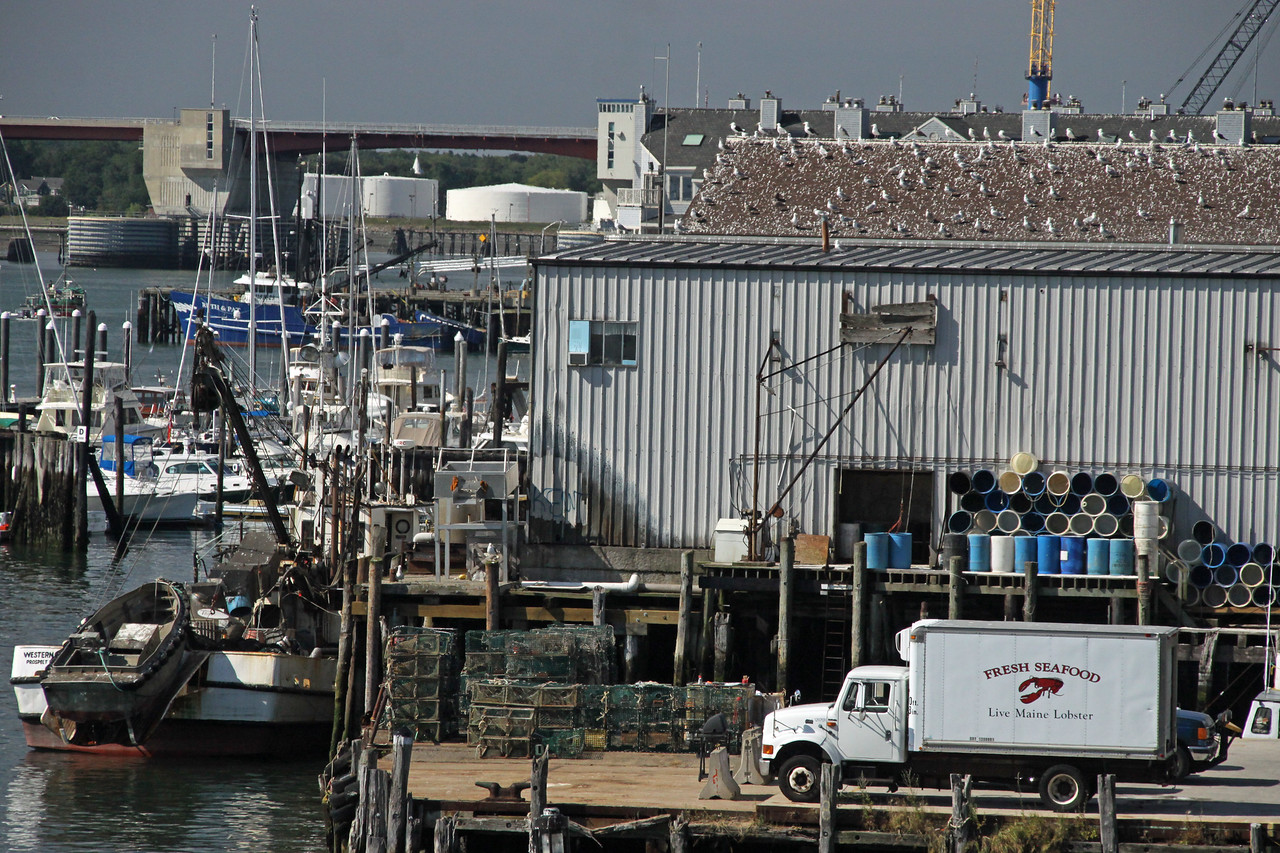 Lobster processing plant in Portland Maine