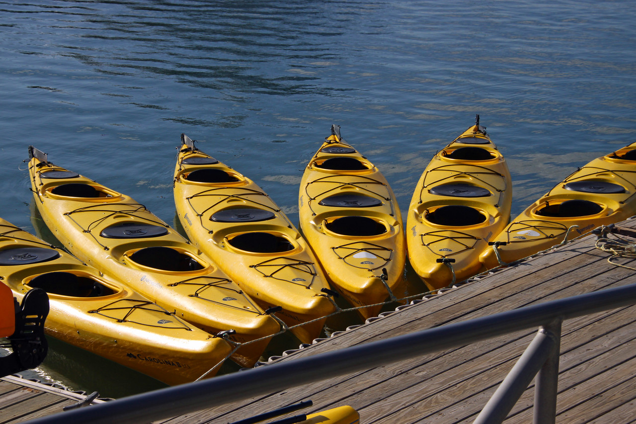 Kayaks in Bar Harbor.