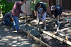Pouring concrete into the walk forms.