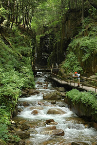 Trail to the Flume