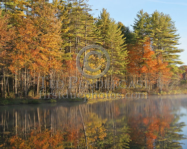 Reflected Pines - 0748hrs Mon. Oct.9, 2006 - Hopkinton, NH - Everett Lakes Off Stumpfield Road