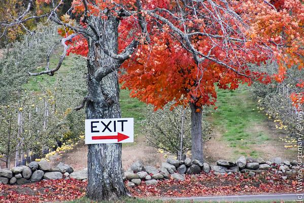 Autumn New England 2015