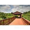 Pedestrian bridge with observation deck overlooking Padgetts Preserve. Bridge leads to pool, cabana, and tot lot.