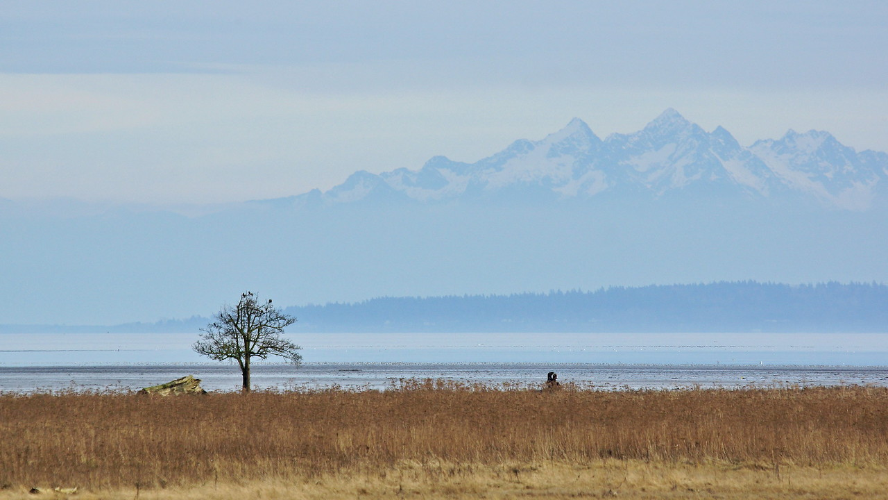 Boundary Bay & Twin Sisters Range on a warm winter day.
