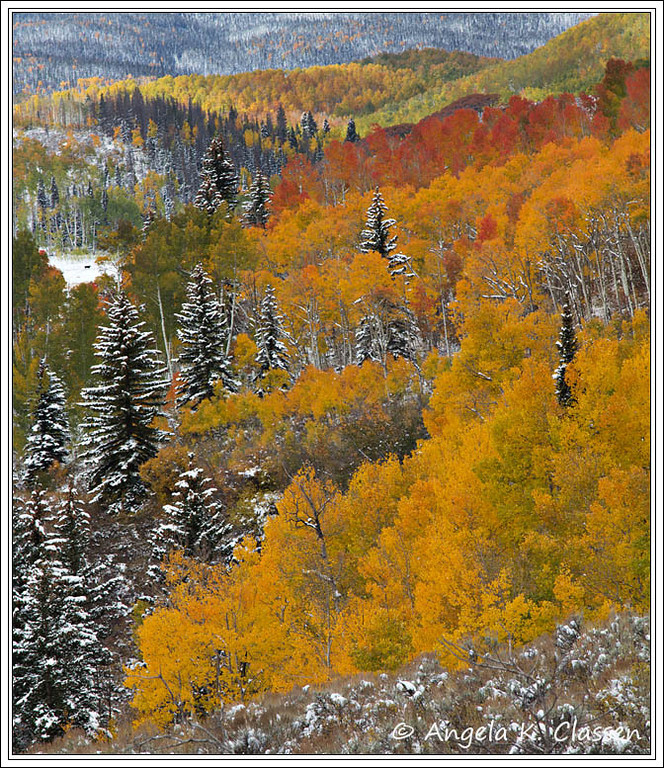 Fall and winter collide, Crosho Road near Steamboat Springs, Colorado
