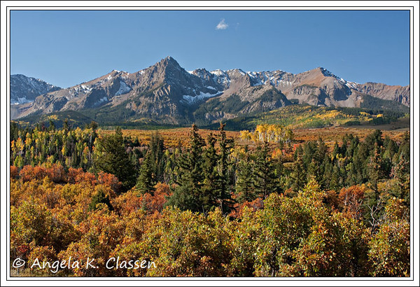 Fall foliage abounds at the Dallas Divide between Ridgway and Telluride, Colorado