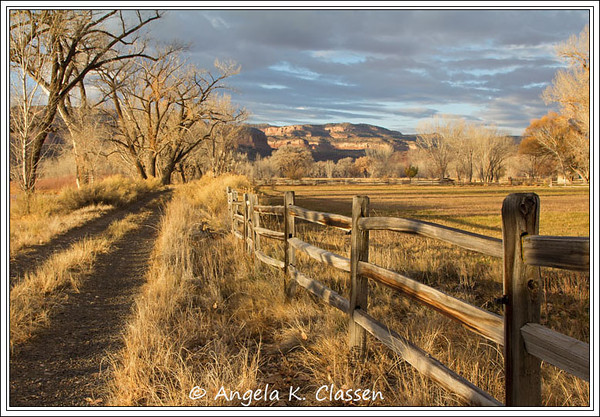 Warm morning light bathes a rural roadway scene on a private ranch near Loma, Colorado