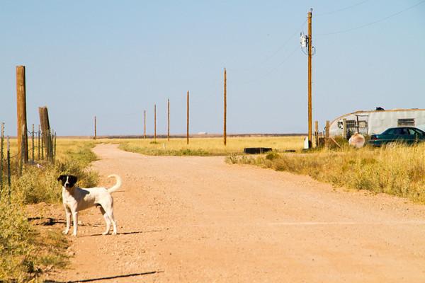 New Mexico- 2013