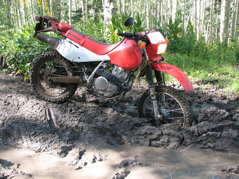 Stuck in the mud.  Me and Mtech1950 decided to attempt the this trial which was basically an ATV trail.  I was on my cheater bike and mtech1950 was on his XRL.  He had no problem handling<br /> that big red on this trail.  This is the Archuleta trail in the Chama River Basin.