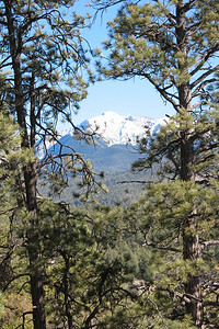 Peak from Forest Service road.