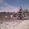 snow 1-11