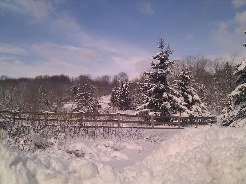 snow 1/11