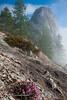 Castle Crags State Park-10