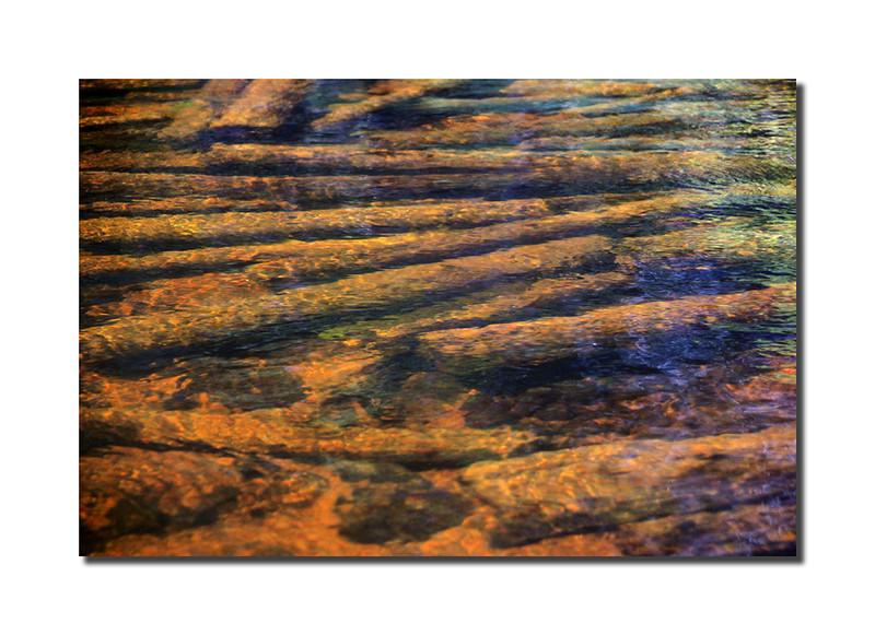 Underwater Logs, St. Croix, Maine