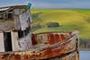 Point Reyes Shipwreck-9927