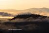 Castle Crags Wilderness-6