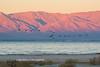 Salton Sea 2016-2