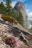 Castle Crags State Park-9
