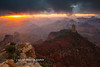 Grand Canyon 2016-9
