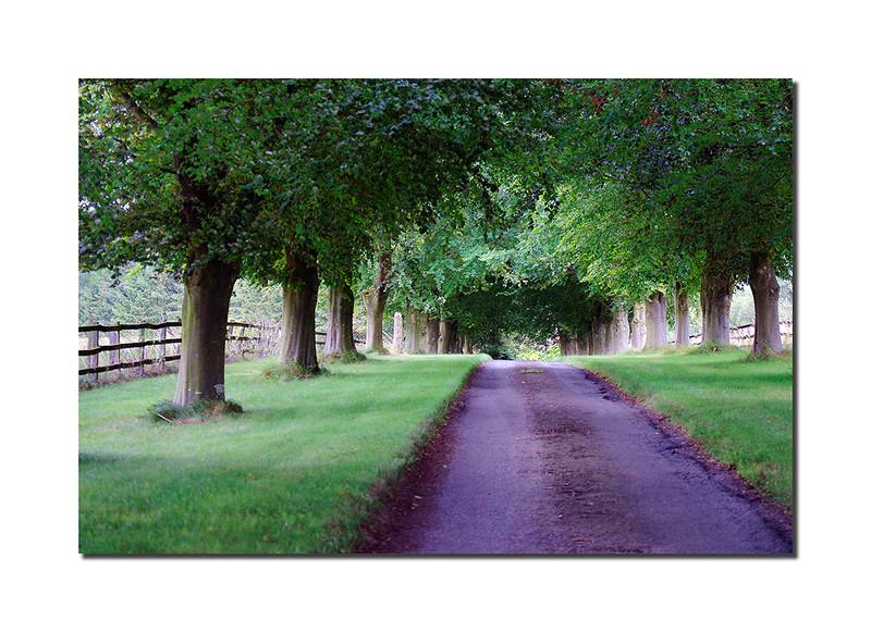 Farm Entrance, Cotswolds, England