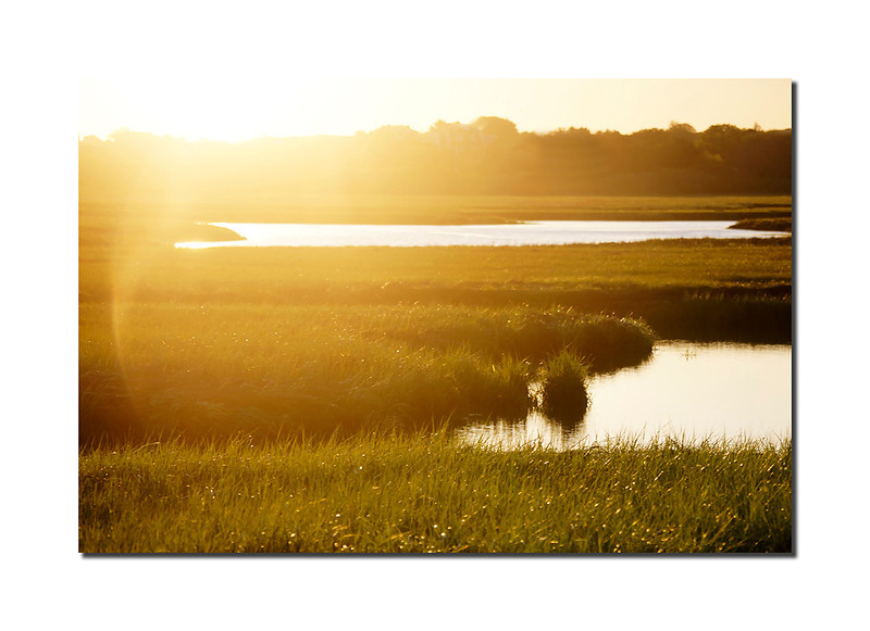 Sunrise in the Creeks, Nantucket