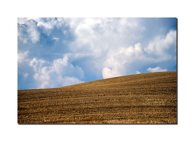 Field, Pienza, Italy