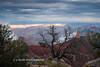 Grand Canyon 2016-13