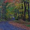 Brook Mountain Road 2