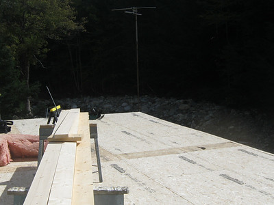 New Roof 2012
