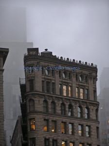 List / New York City
