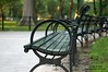 An ongoing project, with park benches as a theme.  Levels corrected on PSE 6.0