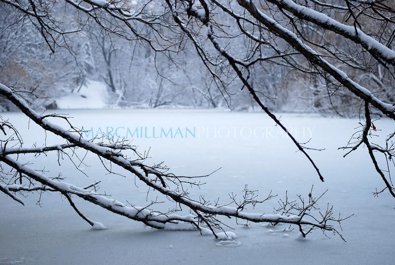 The Lake (Central Pk- Fri 2 26 10)