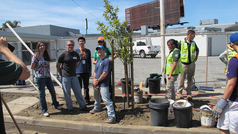 Planting with Our City Forest
