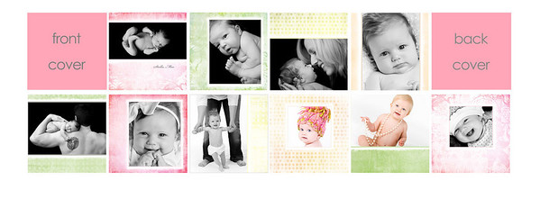 "3x3 mini brag book ""sunrise""  3x3 mini brag books are a parent favorite! These little books, sold in sets of three, have ten sides filled with precious images of your little one. They are the perfect gift size and great for grandparents, your purse, the office...you name it!  This mini brag book comes with a pink front and back cover. To fill this brag book, you will need to choose 10 images from your gallery, making sure that at least four are horizontal and four are vertical. It's as simple as providing Jen with your 10 chosen images when placing your order and letting her place them where they work best!  If you want to specify where your images go, please feel free to do so!  PLEASE NOTE THAT YOU MUST PICK IMAGES FROM YOUR ONLINE GALLERY THAT HAVE THE SAME ORIENTATION AS THE TEMPLATE REQUIRES (e.g., you must choose a vertical image for a vertical opening and a horizontal image for a horizontal opening).  If incorrect images are chosen, the next closest ""correct"" image will be chosen by Jen to replace any incorrect choices.  If you have questions about the difference between vertical and horizontal images, please ask prior to order submission.  Thanks!"