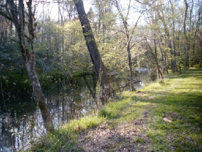 155 WD Creek-1_495_371_90