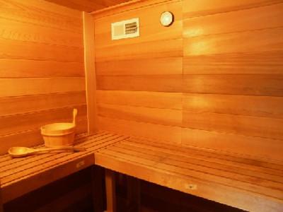 135 Sauna_495_371_90