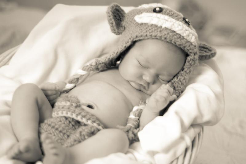 Bennett (Newborn) 152