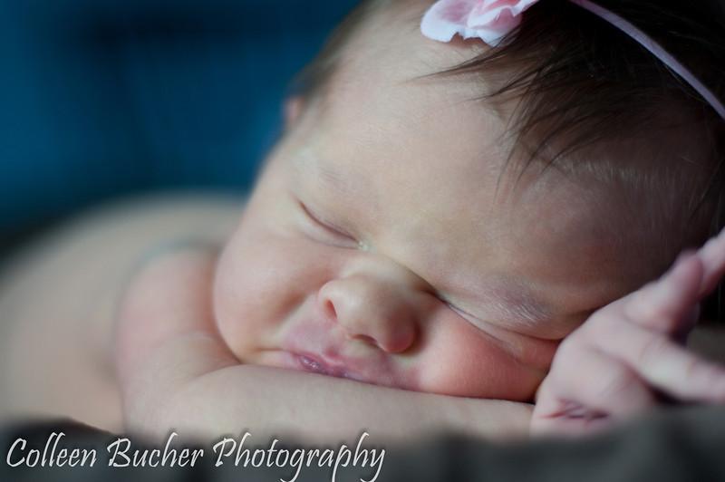 Harmer (Newborn) 310