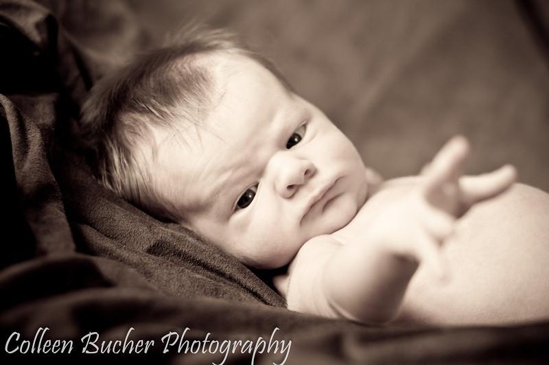 Harmer (Newborn) 031