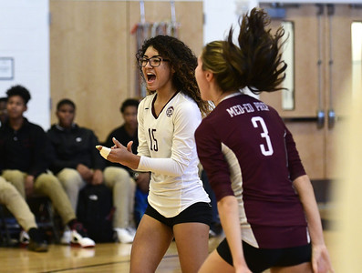 local-girls-volleyball-teams-get-seedings-firstround-matchups-for-state-tournaments