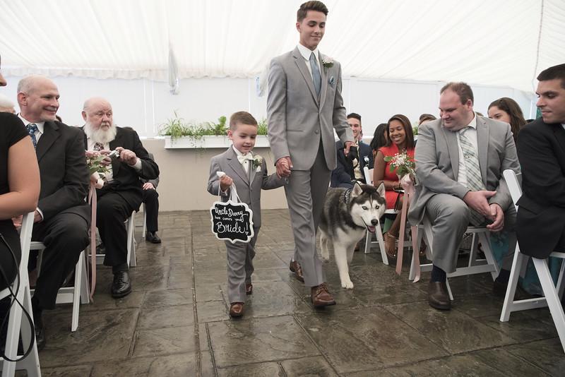 UConn Mascot-Wedding