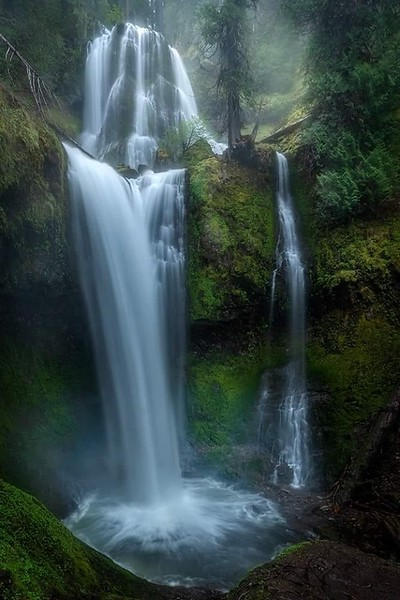 forest creek, gifford pinchot, washington, pnw, pacific northwest, spring, waterfall, long exposure