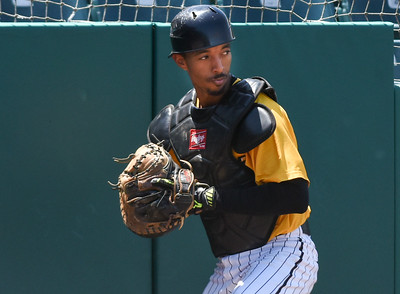 051617  Wesley Bunnell | Staff  The New Britain Bees vs the Bridgeport Bluefish in the 2nd game of a double header played early afternoon on Tuesday. James Skelton (3) makes a catch on a pop up near the padding.