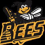 new-britain-bees-sign-former-unc-and-current-uconn-pitcherinfielder-ben-casparius