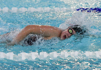 berlin-newington-compete-at-state-swim-meets