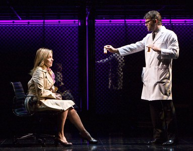 "Jeremy Kushnier and Alice Ripley the national touring production of ""Next to Normal."" Photo by Craig Schwartz."